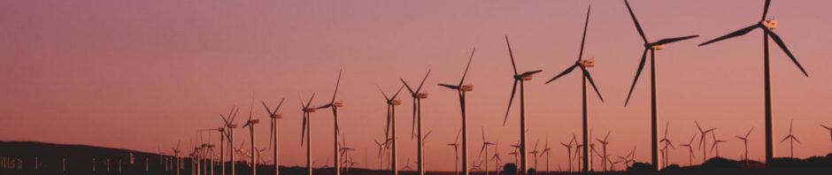 Eine lange Reihe Windräder steht vor einem von der Morgenröte gefärbten Horizont.